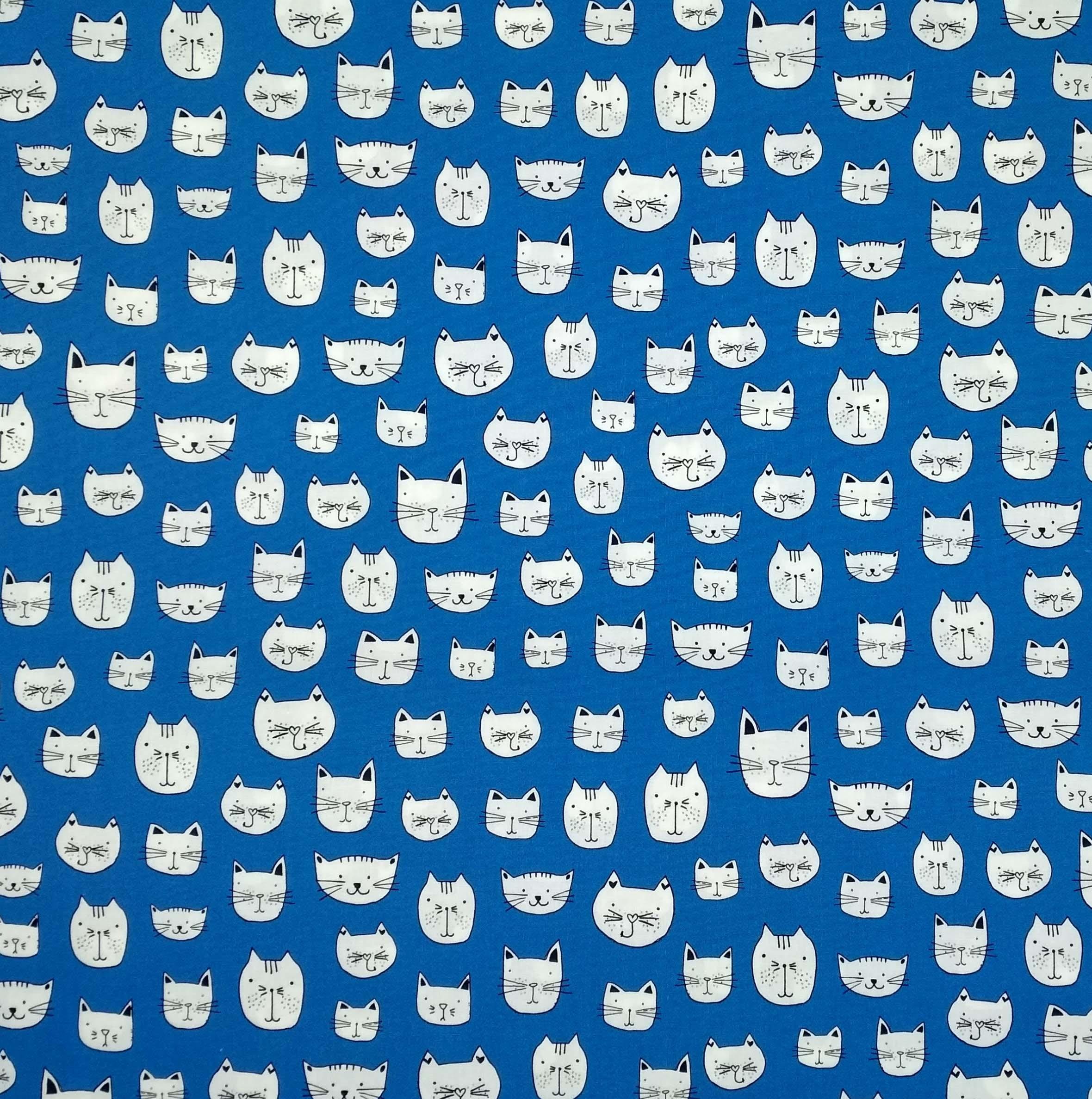 Gatos Azul