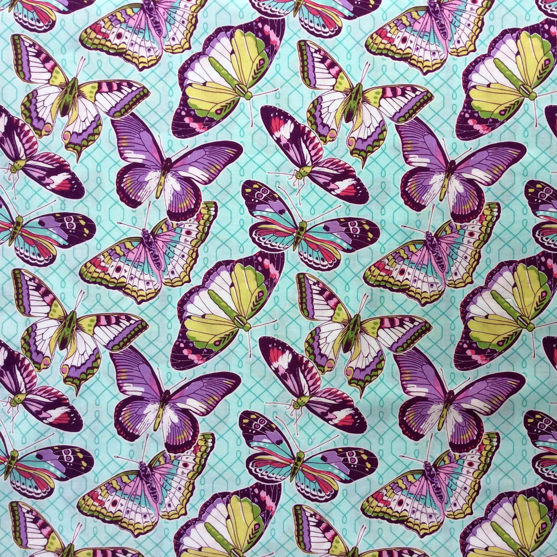 Mariposas aqua
